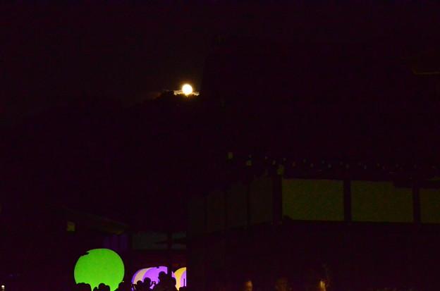 月夜の光の祭