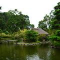 Photos: 芦の苫屋