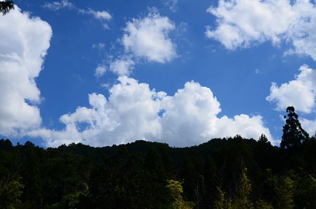 裏山の空と雲