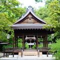 Photos: 梨木神社