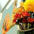 Photos: リビングの花