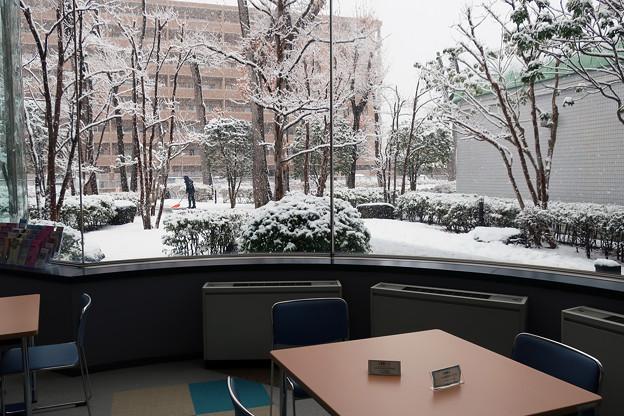 雪のふぁみりこらぼ3