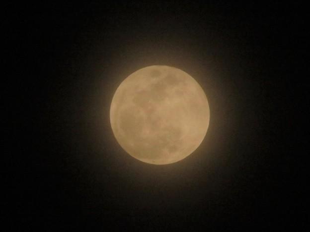 おぼろ月(満月)_2939
