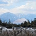 写真: 鶴見岳&伽藍岳&扇山_3071