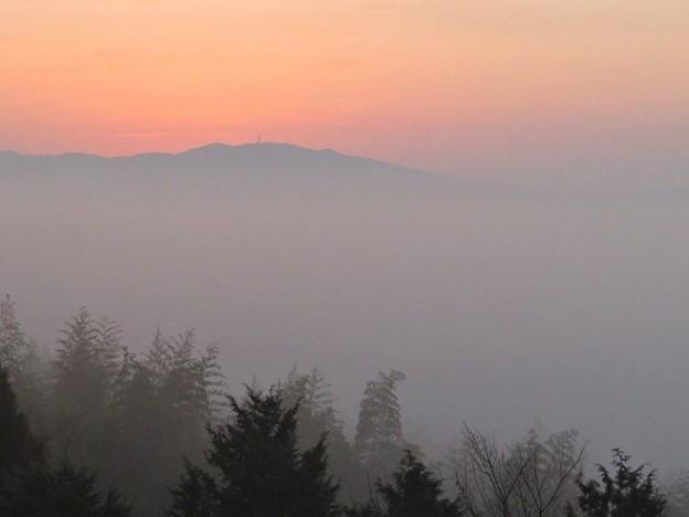 朝霧日の出前_3676