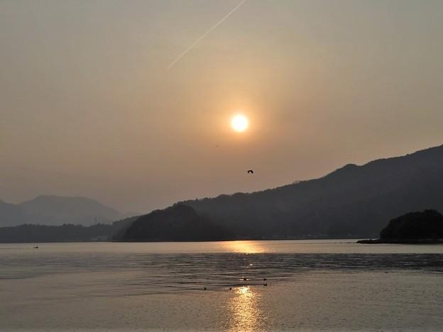 夕陽&飛行機雲_3755