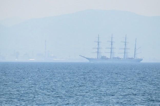 帆船日本丸_7414