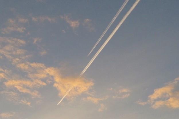 写真: 飛行機雲_2954