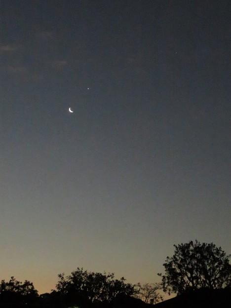 月&金星&木星_6502
