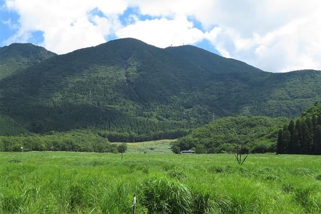 猪の瀬戸湿原&鶴見岳_3663
