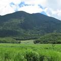 Photos: 猪の瀬戸湿原&鶴見岳_3663