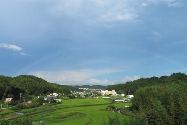 虹_4582