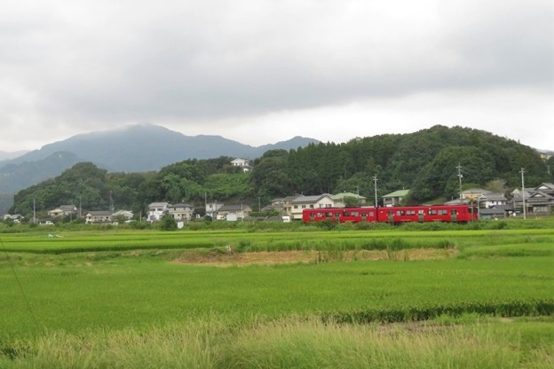 里山風景_4786