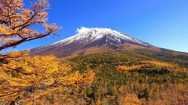 富士山五合目、奥庭の黄葉