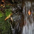 写真: Mini Waterfall