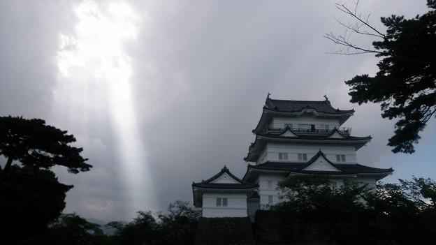 写真: 小田原城 雲光