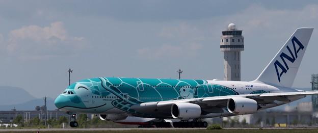 ANA A380     JA382A