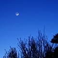 写真: 月と宵の明星2