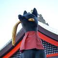 写真: 伏見稲荷1