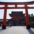 写真: 伏見稲荷2