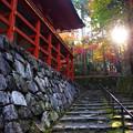 Photos: 比叡山横川中堂