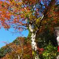 Photos: 三方石観世音5
