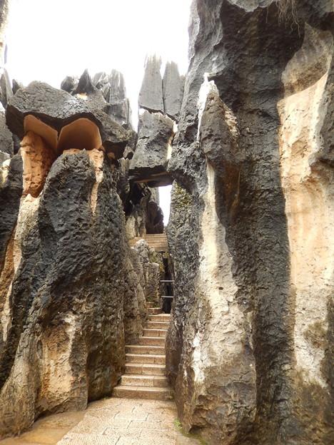 雲南省 世界遺産 石林 #7