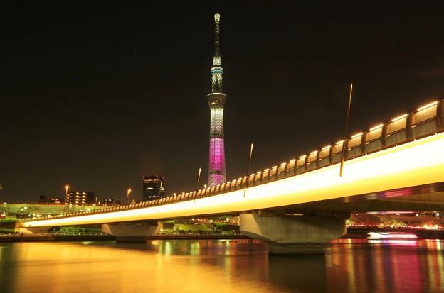 桜橋とスカイツリー