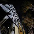 Photos: 181130_東京・表参道_イルミネーション_G181130XA9360_MZD8FP FR1_X9Ss