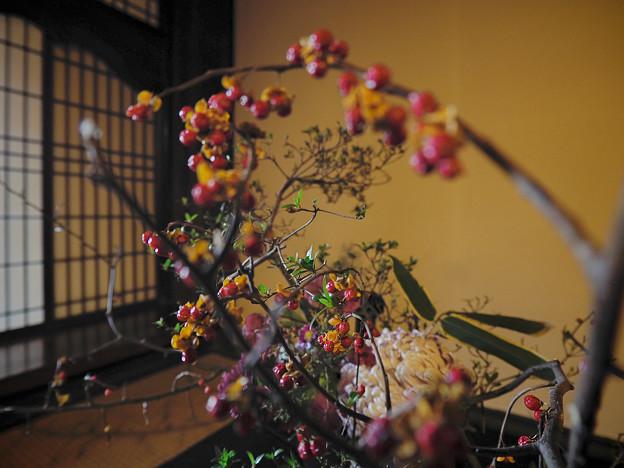 Photos: 181201_横浜市中区・三溪園_旧矢箆原家住宅_G181201XB0702_MZD8FP FR3_X9Ss