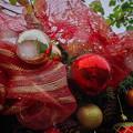 181223_横浜市西区・横浜イングリッシュガーデン_クリスマス飾り_F181223I3281_MZD12ZP_AC3_X9Ss
