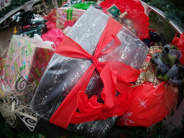 Photos: 181223_横浜市西区・横浜イングリッシュガーデン_クリスマス飾り_G181223XB5017_MZD8FP_X9Ss