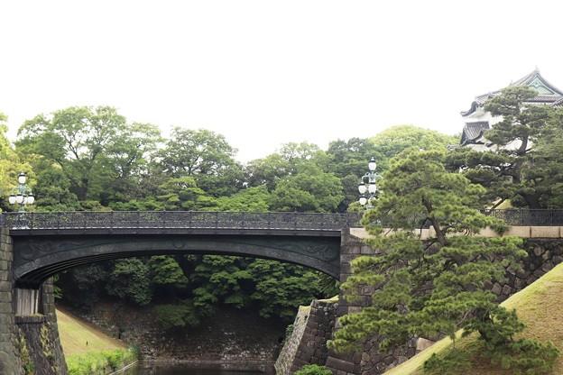 皇居 二重橋