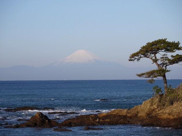 Photos: 横須賀 立石公園02