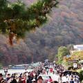 写真: 紅葉2018 嵐山 03