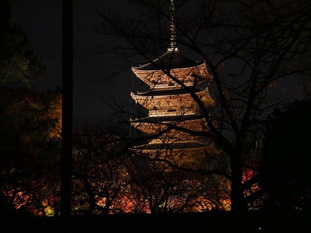 Photos: 紅葉2018 東寺 02