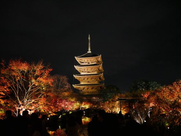 Photos: 紅葉2018 東寺 03