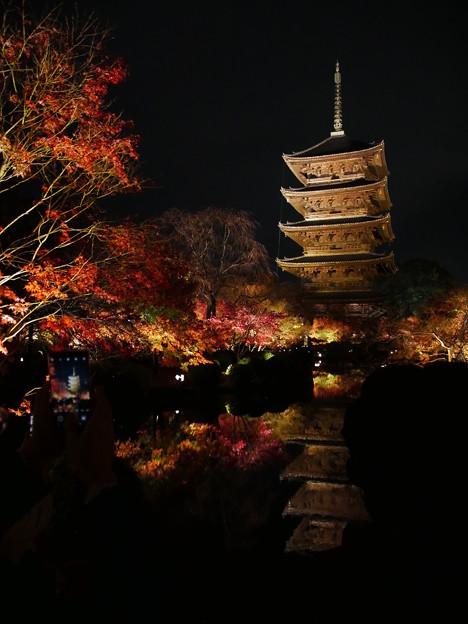 写真: 紅葉2018 東寺 04