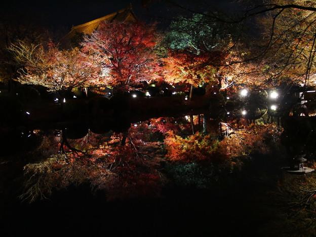 紅葉2018 東寺 05