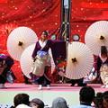 京都さくらよさこい2019 02