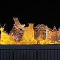 写真: 道新氷の広場2008 (3)