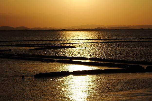 春の児島湾