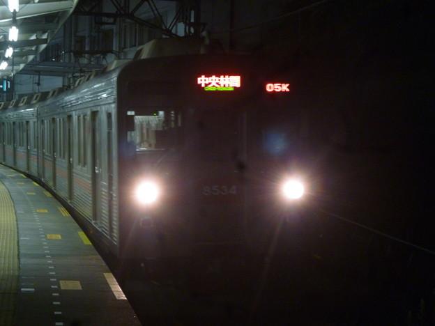 P1030252