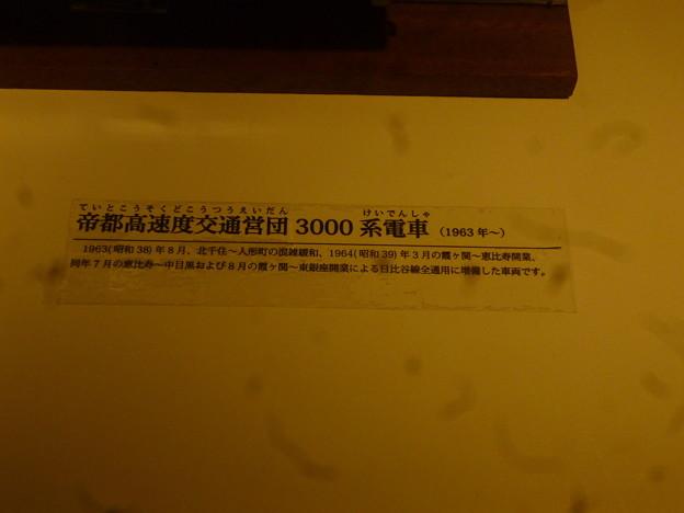 P1030916