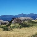 写真: 赤城山遠望