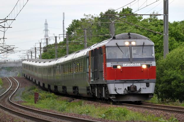 DF200-116 カシオペア