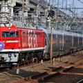 Photos: EF81-95 カシオペアクルーズ 東北本線 東十条駅付近