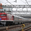 EF81-95 カシオペア 東北本線 南浦和電車区付近