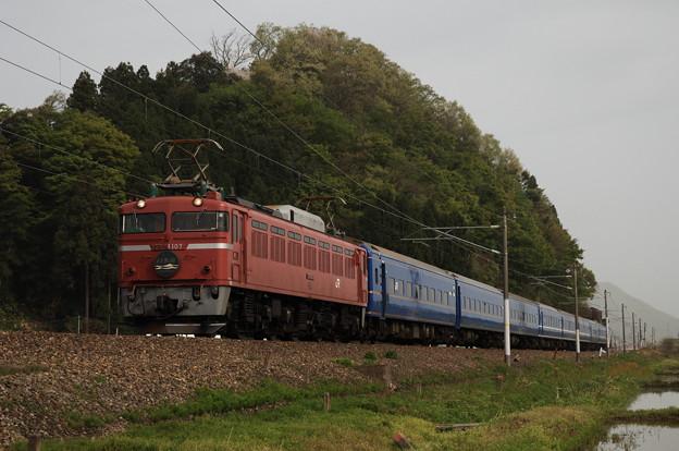 EF81-107 寝台特急 日本海 北陸本線 王子保~南条