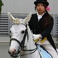 写真: 川崎競馬の誘導馬05月開催 誕生日記念レースVer-09-large